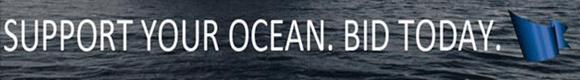 SeaKeeper's Bid, Support Your Ocean